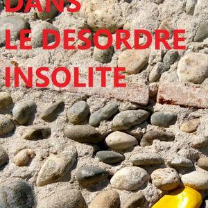 DANS LE DESORDRE INSOLITE - Gildas Cosperec