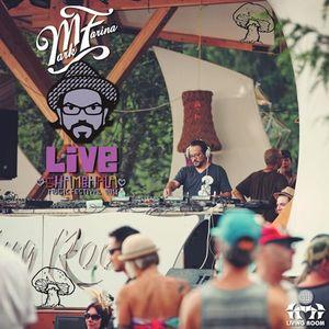 Mark Farina (Mushroom Jazz Set) - SMF Live 2014 Mix Series 008