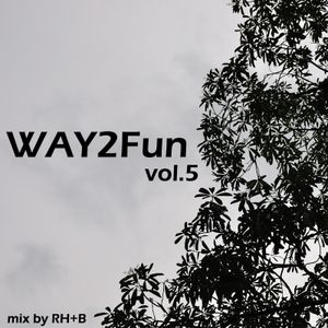 Way2Fun Mix vol.5