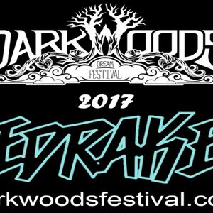 EDRAKE - Dark Woods Mix 2017