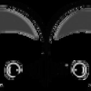 Ganin - Owls