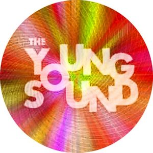 """Tribute to """"The Young Sound"""" Volume 17 - Naturally Stoned"""