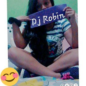 MiX Verano DJ Robin 2017