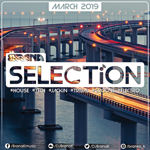Brana K - SELECTiON March 2k19 (house IS music)
