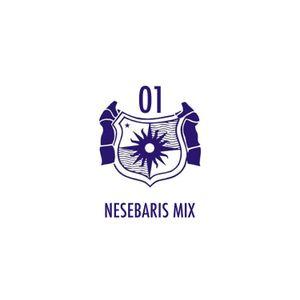 Nesebaris mix   01   2016.10.20