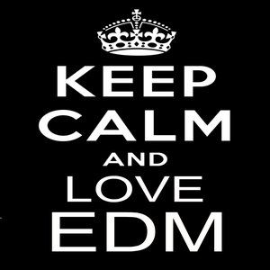 We Love F***ing EDM #4 (BeatBrackerz Broadcast)