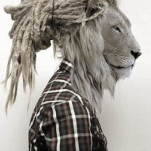 Kogo, Jungle Mix, IMÄI #1v2