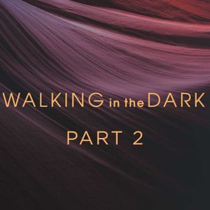 01.15.17 Walking in the Dark :  Jerry Kaping - Tread Carefully