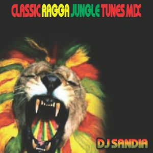 Classic Ragga Jungle Mix 2013