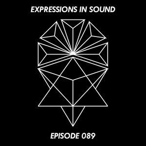 Expressions in Sound 089 :: Mr.C & David Scuba [b2b]