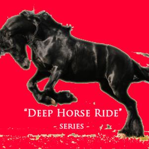 "Marcel Bahr  -  ""Deep Horse Ride""  o314"