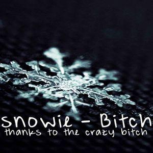 Snowie - Bitch (TechHouse mix)