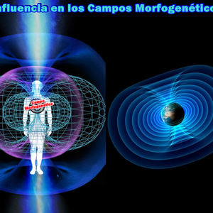 Audio de Apuntes Campos Morficos
