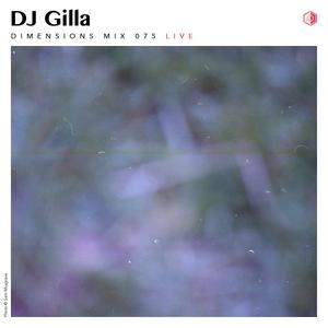 DIM075 -  DJ Gilla (Live 2016)