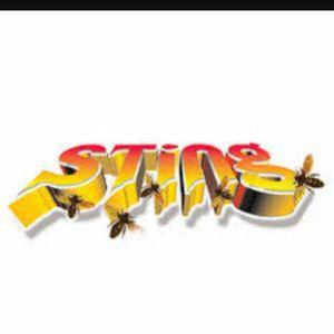 STING TIME BARE BADNESS (RAW)(2016)