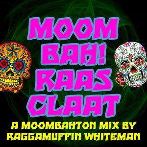 DJ Raggamuffin Whiteman - Moombah Raasclaat [jan 2013]