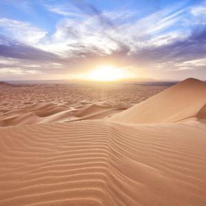 African Experience: Desert (Part 2)