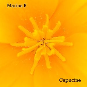Marius B. - November Mix