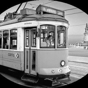Ticket to ride #6 : Humidade de Lisboa