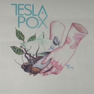 Los sueños se hacen realidad con...TeslaPox.