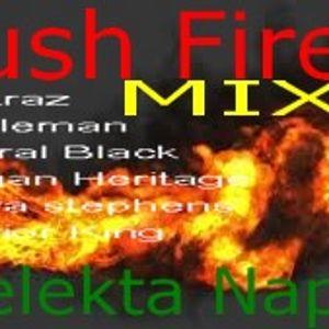 Bush Fire MIX Selekta Naphta