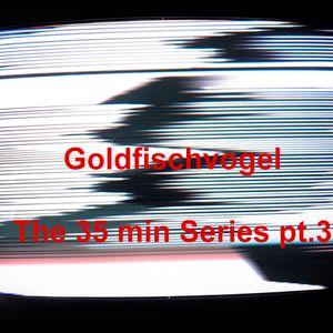 Goldfischvogel - The 35 min Series pt.3