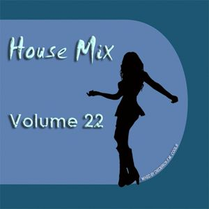 DFMC House Mix Volume 22