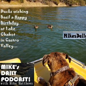 MIKEs-DAILY-PODCAST-1705-Pedigree