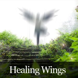 Episode2 - Healing Wings