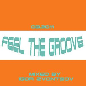 Feel The Groove  mixed by Igor Zvontsov