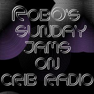RobO's Sunday Jams Crib Radio February 22nd 2015