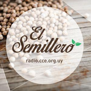 Programa #13 El Semillero - Eco Lombriz