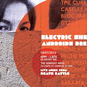 Electric Sheep/Androids Dream - ELECTRO NIGHT - JULY 2012