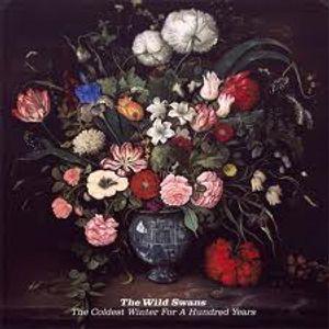 The Smelly Flowerpot on Radio Thetford 300511