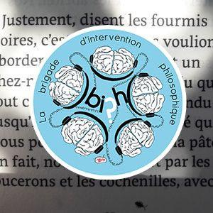 """ITW Vinciane DESPRET - """"Chez soi"""" - extrait BIPh 24/06/17"""