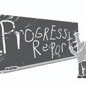PROGRESS REPORT 2