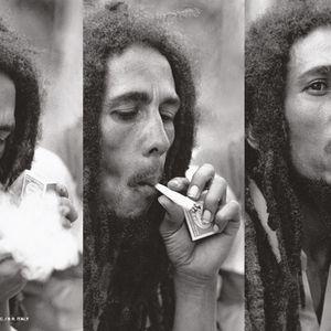 Mike Smoov Presents Bob Marley 101