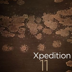 Xpedition Mix 11