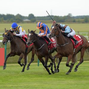 Tuesday's Racing Podcast: 27th September