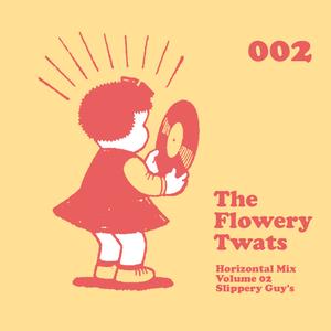 Horizontal Mix Vol 2 - Slippery Guy's