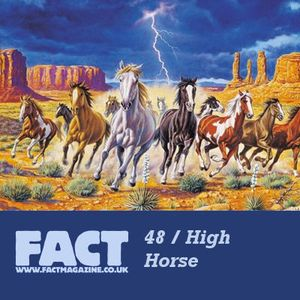 FACT Mix 48: High Horse