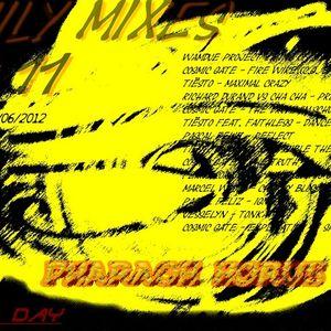 Pharaoh Horus. On summer day (FamilyMixes n°11)[LIVE 21/06/2012]