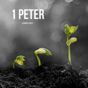 New Purpose - Declaring the Praise of Him - 1 Peter