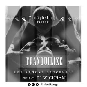 Tranquilize Vol. 1 (RAW)