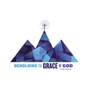 Beholding the Grace of God   Galatians 6:6-10