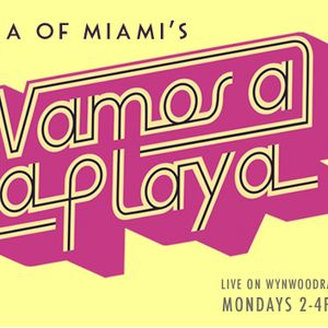 Vamos a La Playa 139 - Laura of Miami