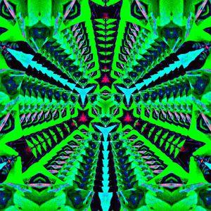 Nocturnal Bass #31 High Frequencies