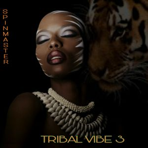 DJ SPINMASTER - TRIBAL VIBE 3
