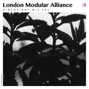 DIM086 - London Modular Alliance