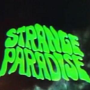 """"""" Strange paradise """" session"""